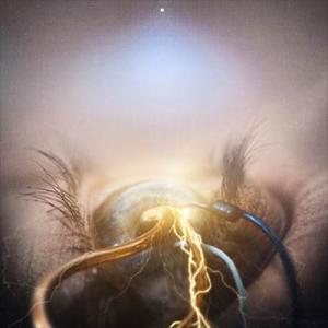 The Agonist Follow The Crossed Line