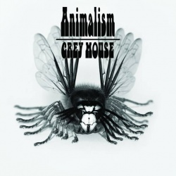 Grey Mouse ANIMALISM